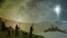 Textured_Shepherds